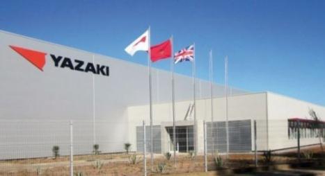القنيطرة.. شركة يابانية تفتتح مصنعا لمكونات السيارات سيخلق 2500 فرصة شغل