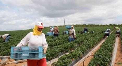 """وزارة الفلاحة تعلن إجراءات جديدة لمواكبة الأزمة الصحية المرتبطة بـ""""كورونا"""""""