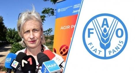 مسؤولة أممية تنوه بجهود المغرب في مجال القضاء على سوء التغذية