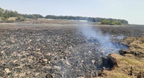 """""""مندوبية المياه والغابات"""" توضح بخصوص حريق المرجة الزرقاء بمولاي بوسلهام"""
