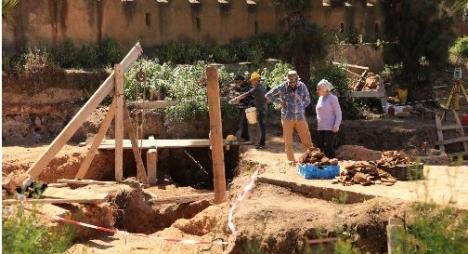 """المغرب..اكتشاف """"موزازور"""" جديد من العصر الطباشيري"""