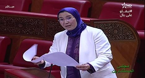 الوفي: ارتباط مغاربة العالم بالمغرب ثابت ورغبتهم في الاستثمار به متواصلة