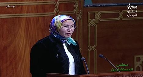 الوفي: استطعنا تحقيق تحول محوري بخصوص تعبئة الكفاءات المغربية بالخارج