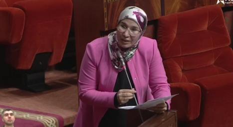 الوفي: الدبلوماسية الرسمية مجندة بكل مكوناتها للدفاع عن القضية الوطنية