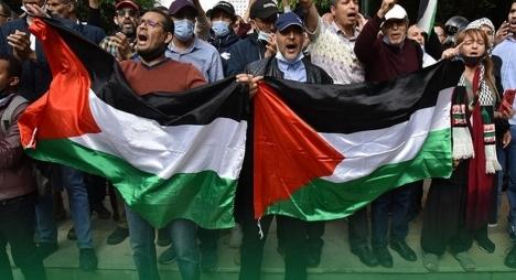 """""""مصباح"""" الدار البيضاء سطات يدعو إلى المشاركة المكثفة في الوقفة الشعبية الداعمة لفلسطين"""