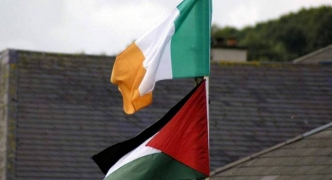 حماس: قرار المجلس الايرلندي خطوة مهمة في تجريم الاحتلال وسياساته الاستيطانية