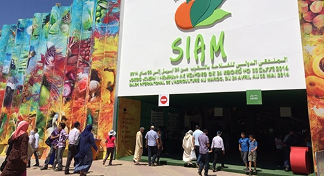 إلغاء نسخة 2021 من المعرض الدولي للفلاحة بالمغرب