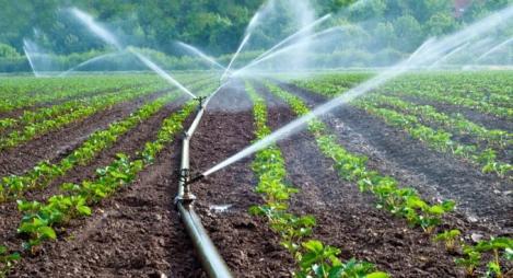 160 ألف شخص سيستفيدون من شق التزويد بماء الري بغلاف يبلغ 14,7 مليار درهم